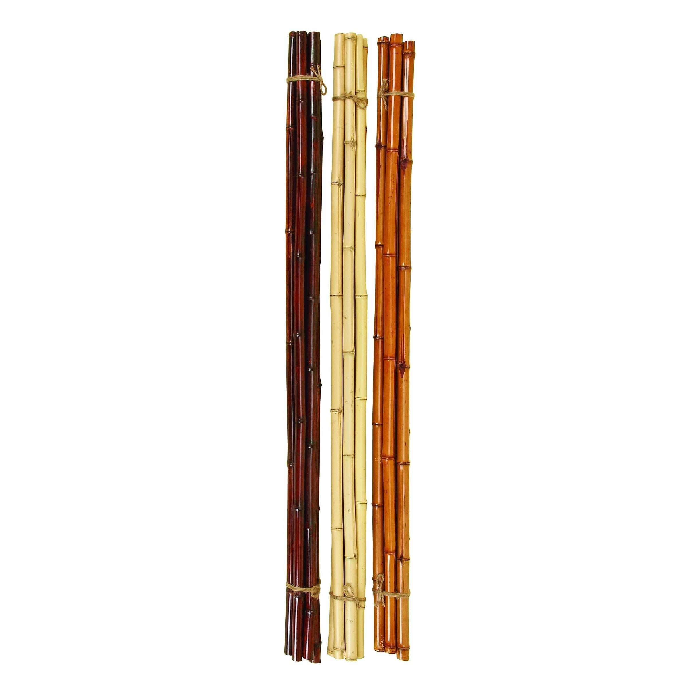 Brown Bamboo Stick ~ Shop ivory sienna and brown bamboo stick bundle bunch