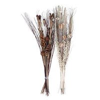 The Gray Barn Jartop Dried Floral Arrangements (Set of 2)