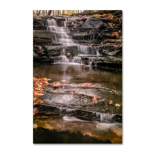 Jason Shaffer 'Hidden Falls 2' Canvas Art - Black