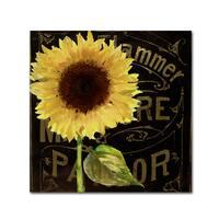 Color Bakery 'Sunflower Salon I' Canvas Art
