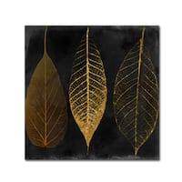 Color Bakery 'Fallen Gold I' Canvas Art - Black
