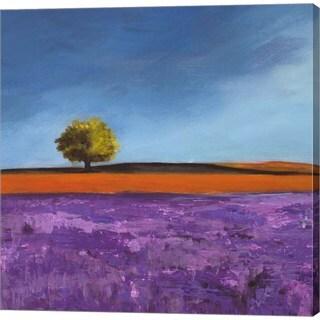 Philip Bloom 'Field of Lavender (Detail)' Canvas Art