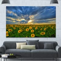 Designart 'Beauty Sunset over Sunflowers' Landscape Wall Artwork - Multi-color