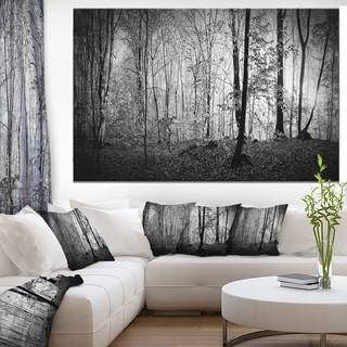 Designart 'Morning in Thick Fall Forest' Extra Large Landscape Canvas Art Print - Black