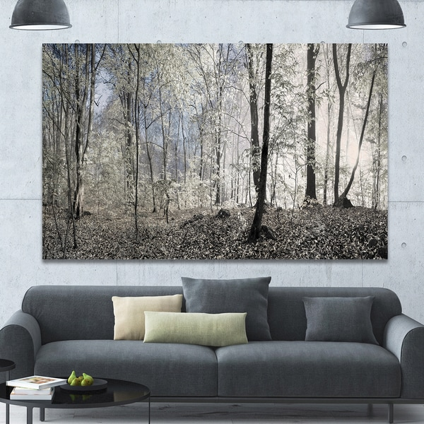 shop designart dark morning in forest panorama landscape large