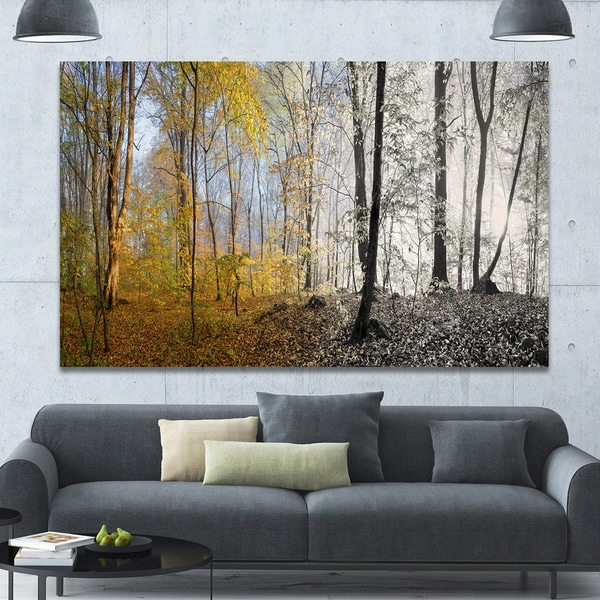 Designart 'Yellow Morning in Forest Panorama' Landscape Large Canvas Art Print