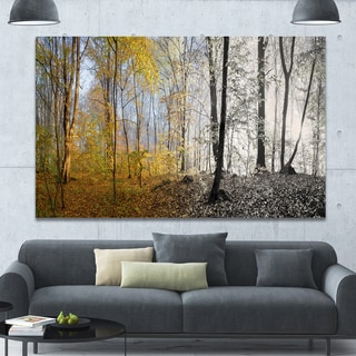 Designart 'Yellow Morning in Forest Panorama' Landscape Large Canvas Art Print - Red