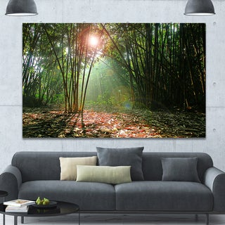 Design Canvas Art Print 'Amazing Green Forest at Sunset' Extra Large Canvas Art Print
