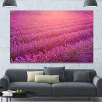 Designart 'Lavender Field and Ray of Light' Floral Canvas Wall Art - Multi-color