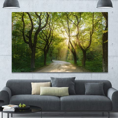 Designart 'Evening in Green Forest' Extra Large Landscape Canvas Art Print