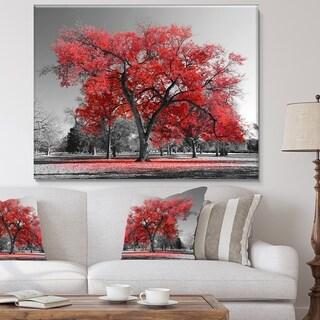 Designart 'Big Red Tree on Foggy Day' Large Landscape Canvas Art Print