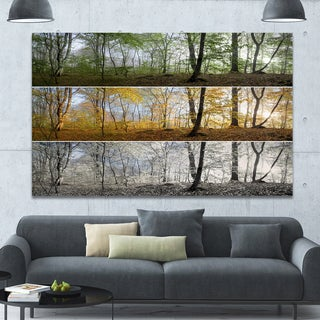 Designart 'Three Seasons Forest Panorama' Extra Large Landscape Canvas Art Print
