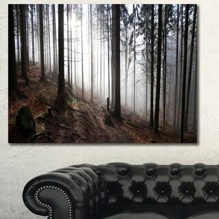 Designart 'Misty Forest Morning Panorama' Large Landscape Canvas Art Print