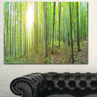 Designart 'Thick Green Forest Panorama' Large Landscape Canvas Art Print