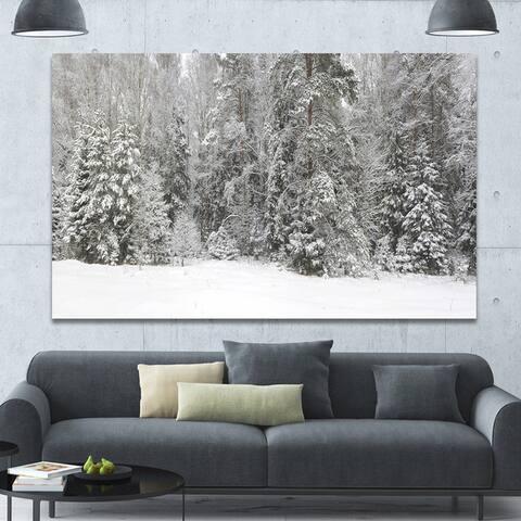 Designart 'Foggy Winter Forest Panorama' Extra Large Landscape Canvas Art Print - Multi-color