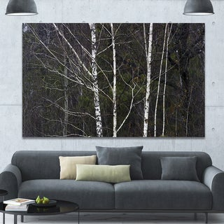 Designart 'Black and White Birch Forest' Abstract Wall Art Canvas