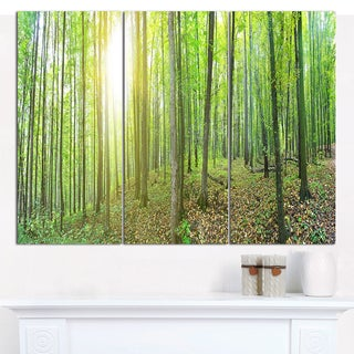 "Designart 'Thick Green Forest Panorama' Multipanel Landscape Canvas Art Print - 36""x28"" 3 Panels"