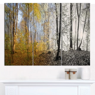 """Designart 'Yellow Morning in Forest Panorama' Multipanel Landscape Canvas Art Print - 36""""x28"""" 3 Panels"""