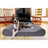 Other Pet Beds