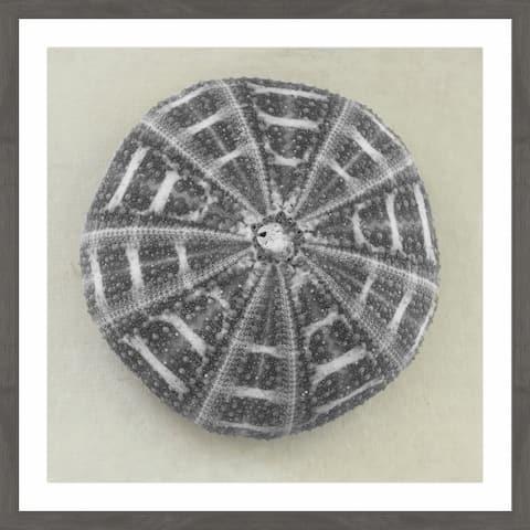 Marmont Hill - Handmade Charcoal Sea Urchin Framed Print