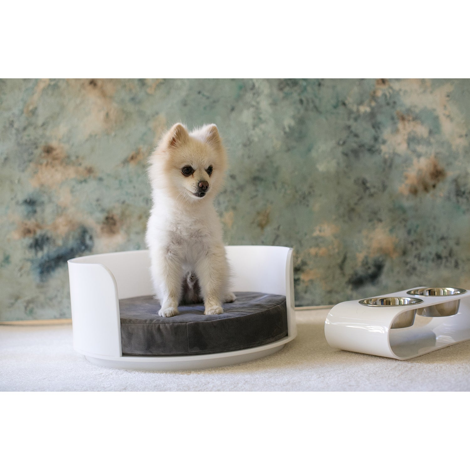 Retro Acrylic Pet Bed (Clear Acrylic Curved Dog Bed- Berr...