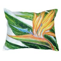 Bird of Paradise No Cord Throw Pillow