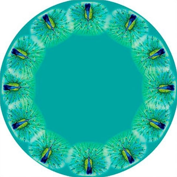 Peacock Round Tablecloth (68 Inch)