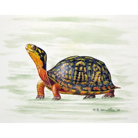 Betsy Drake Happy Turtle Place Mats (Pack of 4)