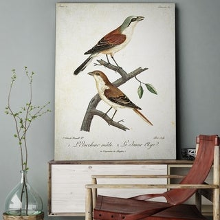 Wexford Home 'Aviary Sketch XXIVII' Gallery-wrapped Canvas Art