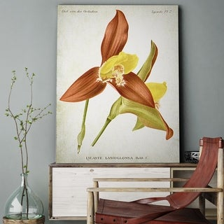 'Botanical Plate XXIII' Canvas Wall Art