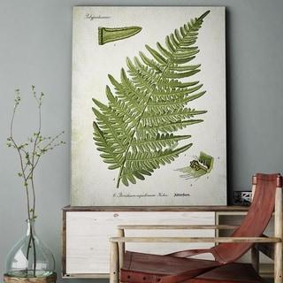 Wexford Home 'Botanical Plate XXII' Canvas Wall Art