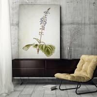 Wexford Home 'Botanical Plate XVIIII' Canvas Wall Art