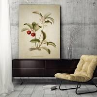 Wexford Home 'Botanical Plate XVIII' Wall Art