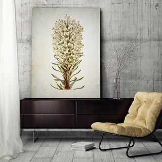 Wexford Home 'Botanical Plate VIIII' Wrapped Canvas Art