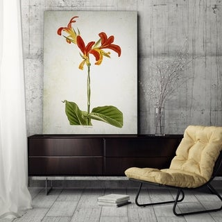 Wexford Home 'Botanical Plate VIII' Canvas Art Print