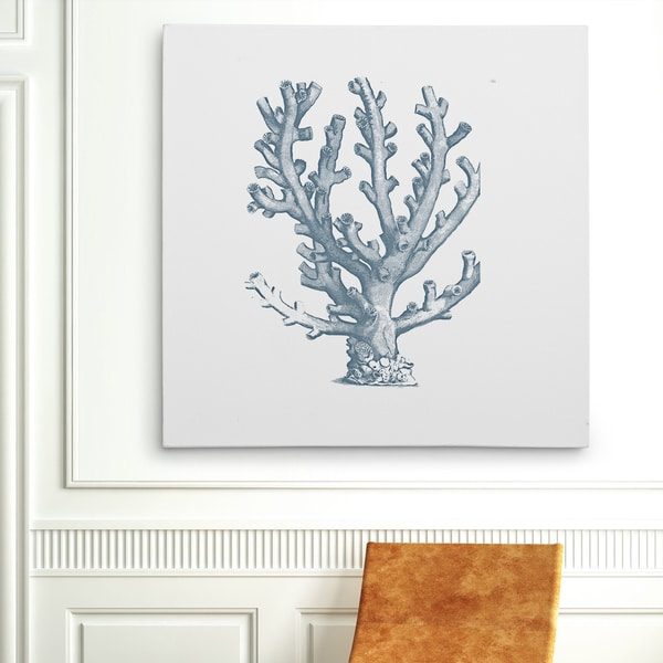 Canvas art gallery wrapped canvas wexford home coral sketch blue iii gallery wrapped