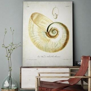 'Seashell Sketch II' Gallery-wrapped Canvas Art