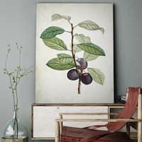 'Botanical Sketch XXV' Gallery-wrapped Canvas Art