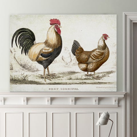 Wexford Home 'Rooster Sketch I' Gallery-wrapped Canvas