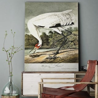 'Whooping Crane' Gallery-wrapped Canvas Art