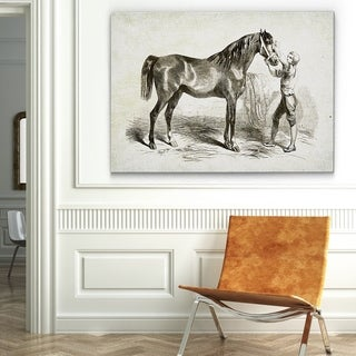 Wexford Home 'Equine Sketch V' Gallery-wrapped Canvas Wall Art