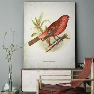 Wexford Home 'Aviary Sketch I' Gallery-wrapped Canvas Art