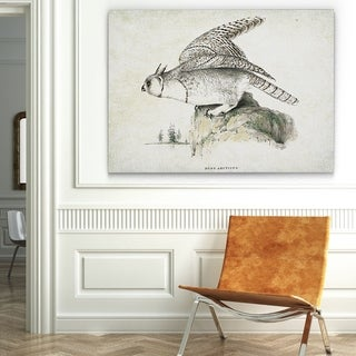 'Aviary Plate XIV' Canvas Wall Art