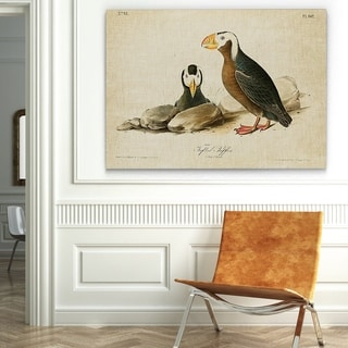 Wexford Home 'Aviary Plate X' Gallery-wrapped Canvas