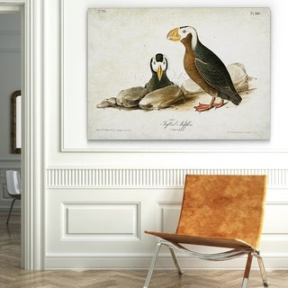 Wexford Home 'Aviary Plate VIIII' Canvas Wall Art