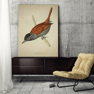 Wexford Home 'Aviary Plate VIII' Gallery-wrapped Canvas