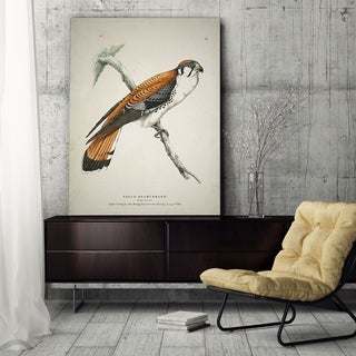 Wexford Home 'Aviary Plate V' Gallery-wrapped Canvas Art