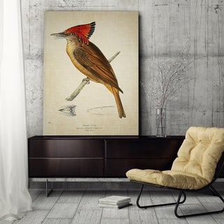 Wexford Home 'Aviary Plate III' Canvas Wall Art