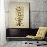 Wexford Home 'Botanical Plate X' Canvas Art Print
