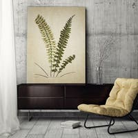 Wexford Home 'Botanical Plate VI' Gallery-wrapped Canvas Art